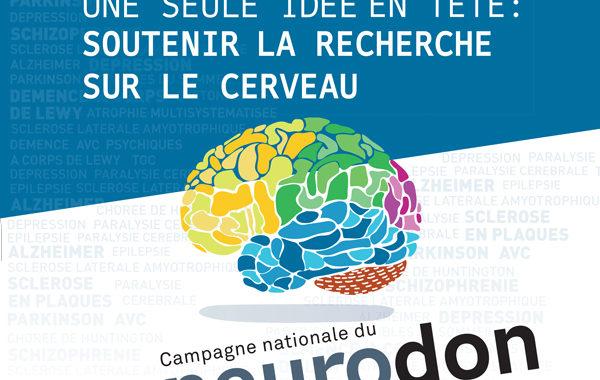 Neurodon